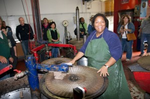 Operating The Traditional Cold Press Olive Oil Mill